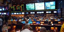 Why has online sports gambling become popular?